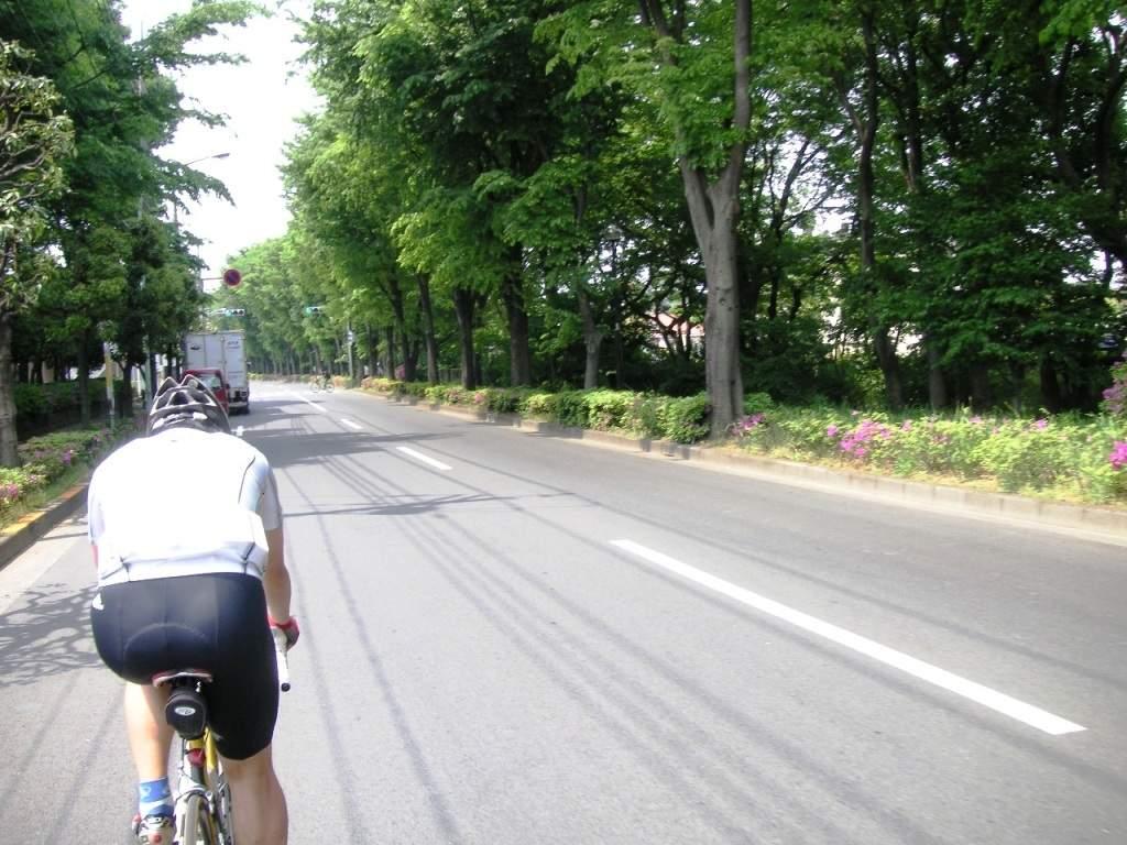 ... 自転車道へと入る。 多摩川